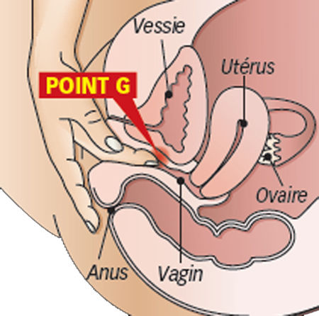vlagalishe-kak-osmatrivayut-u-ginekologa